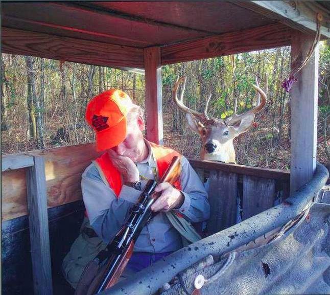 Image result for sleeping hunter