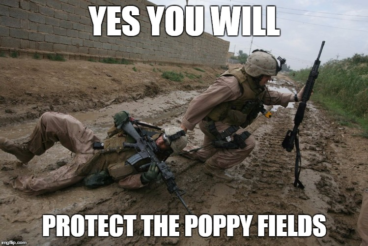 Soldier dragging soldier to protect poppy fields | YES YOU WILL PROTECT THE POPPY FIELDS | image tagged in soldier,mud,dragging,poppy | made w/ Imgflip meme maker
