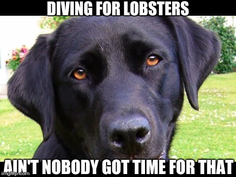 DIVING FOR LOBSTERS AIN'T NOBODY GOT TIME FOR THAT | made w/ Imgflip meme maker