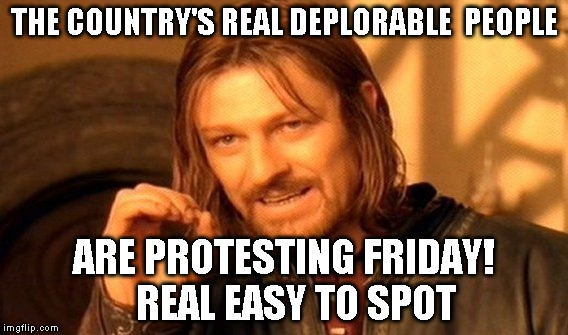 One Does Not Simply Meme | THE COUNTRY'S REAL DEPLORABLE  PEOPLE ARE PROTESTING FRIDAY!    REAL EASY TO SPOT | image tagged in memes,one does not simply | made w/ Imgflip meme maker