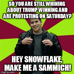 Contradictory Chris | SO YOU ARE STILL WHINING ABOUT TRUMP WINNING AND ARE PROTESTING ON SATURDAY? HEY SNOWFLAKE, MAKE ME A SAMMICH! | image tagged in memes,contradictory chris | made w/ Imgflip meme maker