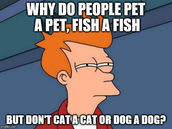Futurama Fry Meme | WHY DO PEOPLE PET A PET, FISH A FISH BUT DON'T CAT A CAT OR DOG A DOG? | image tagged in memes,futurama fry | made w/ Imgflip meme maker
