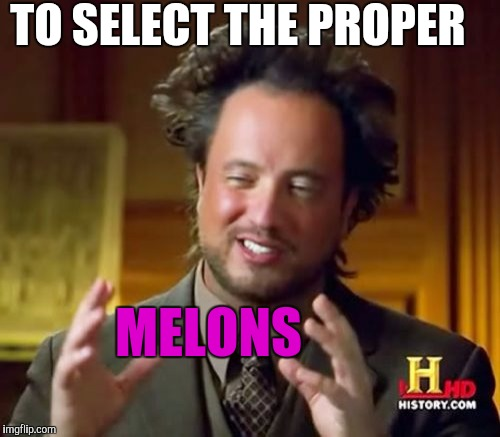 Ancient Aliens Meme | MELONS TO SELECT THE PROPER | image tagged in memes,ancient aliens | made w/ Imgflip meme maker