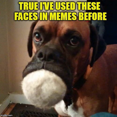 TRUE I'VE USED THESE FACES IN MEMES BEFORE | made w/ Imgflip meme maker