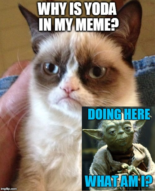 Grumpy Cat Meme | WHY IS YODA IN MY MEME? WHAT AM I? DOING HERE | image tagged in memes,grumpy cat | made w/ Imgflip meme maker