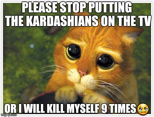 Shrek Cat | PLEASE STOP PUTTING THE KARDASHIANS ON THE TV OR I WILL KILL MYSELF 9 TIMES | image tagged in memes,shrek cat | made w/ Imgflip meme maker