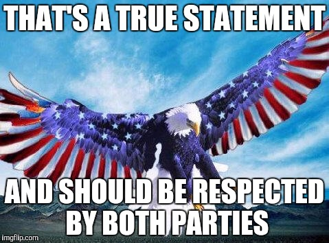 Freedom eagle | THAT'S A TRUE STATEMENT AND SHOULD BE RESPECTED BY BOTH PARTIES | image tagged in freedom eagle | made w/ Imgflip meme maker