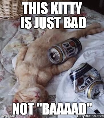 "THIS KITTY IS JUST BAD NOT ""BAAAAD"" 
