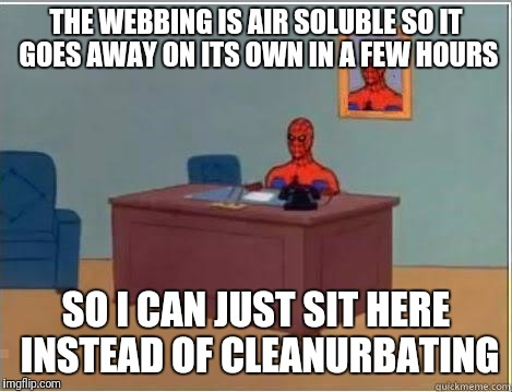 THE WEBBING IS AIR SOLUBLE SO IT GOES AWAY ON ITS OWN IN A FEW HOURS SO I CAN JUST SIT HERE INSTEAD OF CLEANURBATING | made w/ Imgflip meme maker