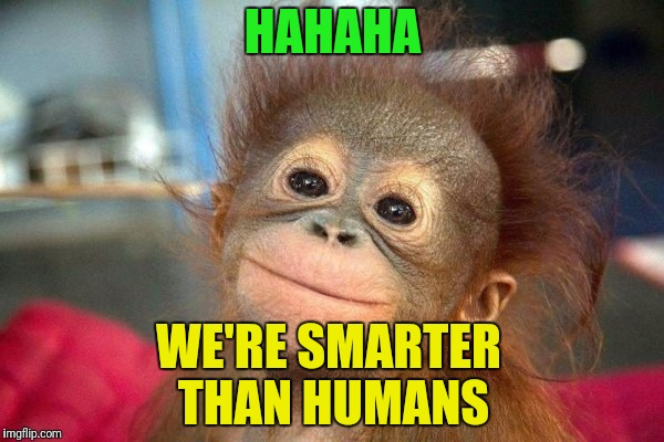 HAHAHA WE'RE SMARTER THAN HUMANS | made w/ Imgflip meme maker