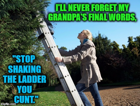 "Dark Humor........... | I'LL NEVER FORGET MY GRANDPA'S FINAL WORDS, ""STOP SHAKING THE LADDER YOU    C**T."" 