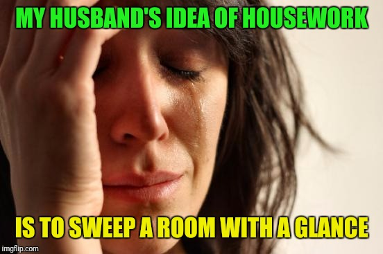 First World Problems Meme | MY HUSBAND'S IDEA OF HOUSEWORK IS TO SWEEP A ROOM WITH A GLANCE | image tagged in memes,first world problems | made w/ Imgflip meme maker