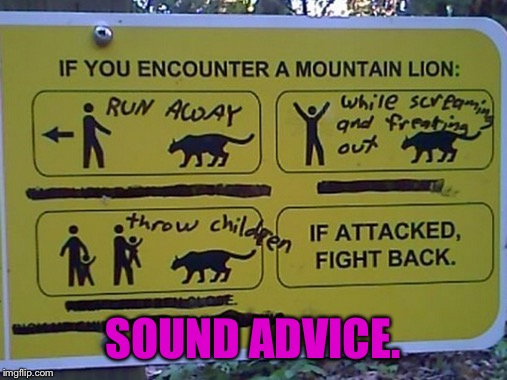 I see no better course of action. | SOUND ADVICE. | image tagged in the rock on the left is | made w/ Imgflip meme maker