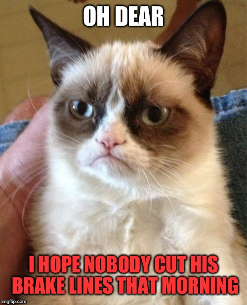 Grumpy Cat Meme | OH DEAR I HOPE NOBODY CUT HIS BRAKE LINES THAT MORNING | image tagged in memes,grumpy cat | made w/ Imgflip meme maker