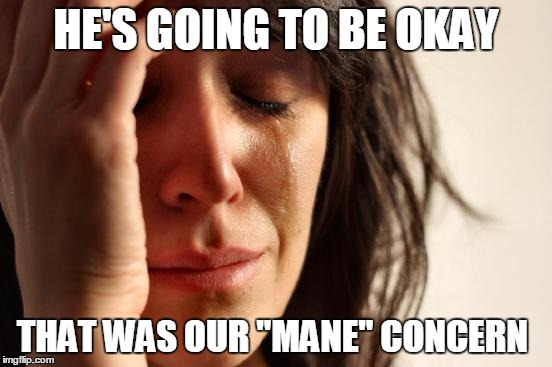 "First World Problems Meme | HE'S GOING TO BE OKAY THAT WAS OUR ""MANE"" CONCERN 