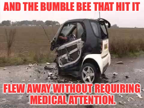 Smart Car Crash | AND THE BUMBLE BEE THAT HIT IT FLEW AWAY WITHOUT REQUIRING MEDICAL ATTENTION. | image tagged in smart car crash | made w/ Imgflip meme maker