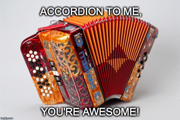 Lets make loud obnoxious music together... | ACCORDION TO ME, YOU'RE AWESOME! | image tagged in janey mack meme,flirt,funny meme,accordion,accordion to me,you're awesome | made w/ Imgflip meme maker