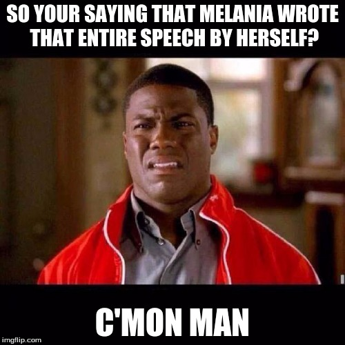 WTF black guy | SO YOUR SAYING THAT MELANIA WROTE THAT ENTIRE SPEECH BY HERSELF? C'MON MAN | image tagged in wtf black guy | made w/ Imgflip meme maker