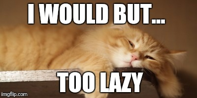 I WOULD BUT... TOO LAZY | made w/ Imgflip meme maker