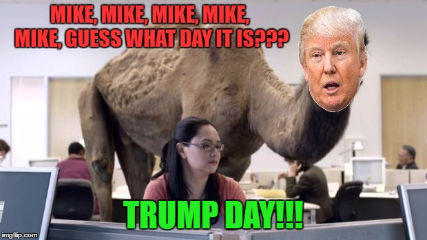 Hump Day Camel | MIKE, MIKE, MIKE, MIKE, MIKE, GUESS WHAT DAY IT IS??? TRUMP DAY!!! | image tagged in hump day camel | made w/ Imgflip meme maker