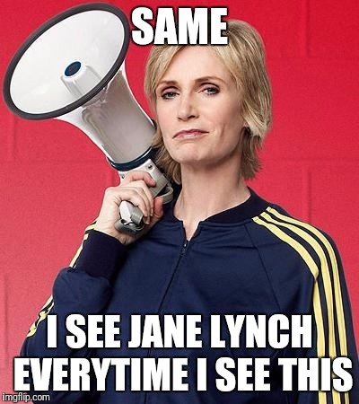 SAME I SEE JANE LYNCH EVERYTIME I SEE THIS | made w/ Imgflip meme maker