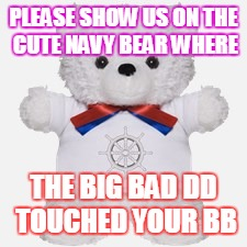 PLEASE SHOW US ON THE CUTE NAVY BEAR WHERE; THE BIG BAD DD TOUCHED YOUR BB | image tagged in online gaming | made w/ Imgflip meme maker