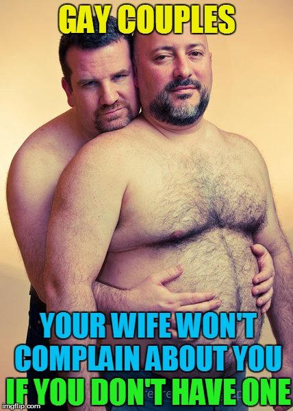 gay bear memes
