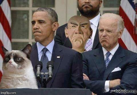 No caption needed | image tagged in memes,obama,joe biden,grumpy cat,political meme | made w/ Imgflip meme maker