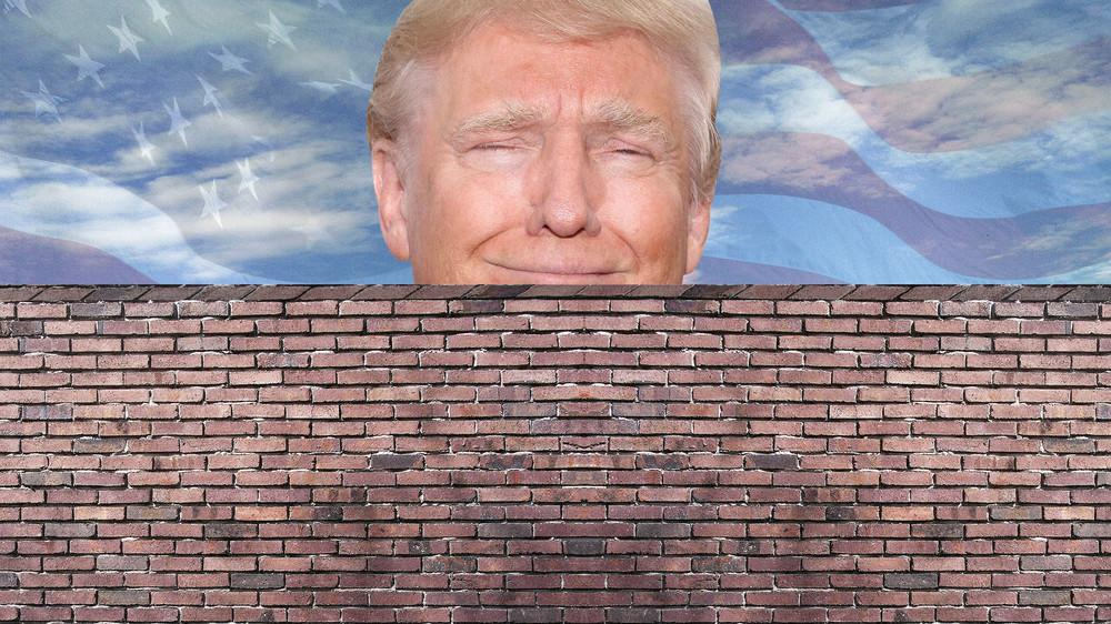 Trump Wall Meme Template