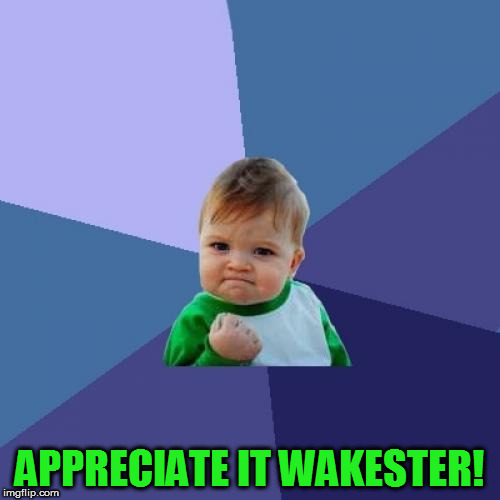 Success Kid Meme | APPRECIATE IT WAKESTER! | image tagged in memes,success kid | made w/ Imgflip meme maker