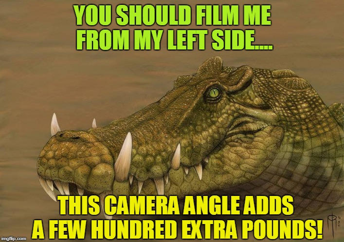 Do ya ever wonder, what if? | YOU SHOULD FILM ME FROM MY LEFT SIDE.... THIS CAMERA ANGLE ADDS A FEW HUNDRED EXTRA POUNDS! | image tagged in do ya ever wonder,what if | made w/ Imgflip meme maker