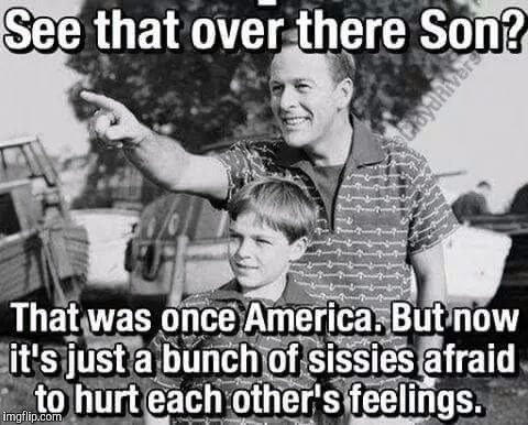 America now  | image tagged in memes,father and son,look son,political correctness,liberals,whiners | made w/ Imgflip meme maker