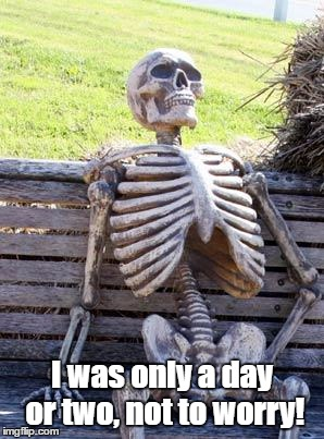Waiting Skeleton Meme | I was only a day or two, not to worry! | image tagged in memes,waiting skeleton | made w/ Imgflip meme maker
