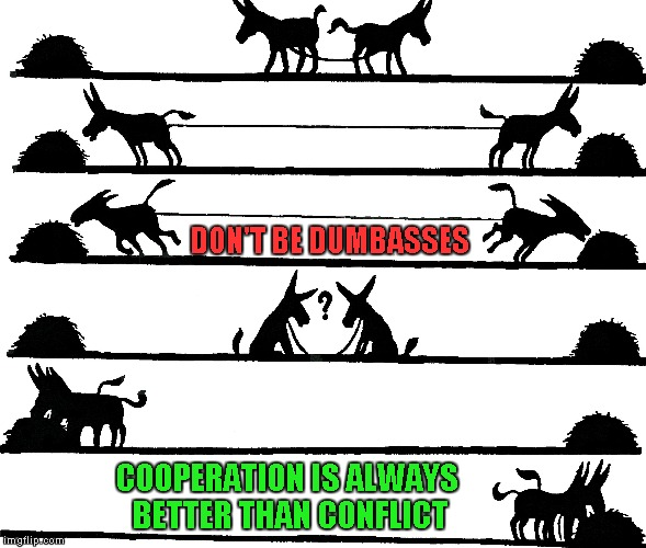 On of my many Imgflip philosophies...that's why you very rarely see me arguing with other users. | DON'T BE DUMBASSES COOPERATION IS ALWAYS BETTER THAN CONFLICT | image tagged in two mules,memes,cooperation,funny,teamwork | made w/ Imgflip meme maker