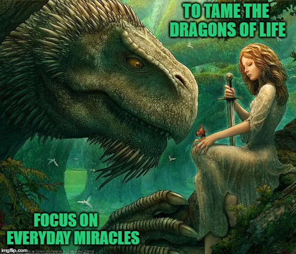 I Can't Always Slay Every Dragon I Encounter In Life ... | TO TAME THE DRAGONS OF LIFE FOCUS ON     EVERYDAY MIRACLES | image tagged in memes,dragons of life,dragons,stress | made w/ Imgflip meme maker