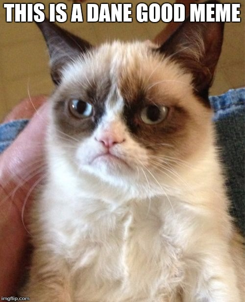 Grumpy Cat Meme | THIS IS A DANE GOOD MEME | image tagged in memes,grumpy cat | made w/ Imgflip meme maker