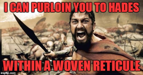 Sparta Leonidas Meme | I CAN PURLOIN YOU TO HADES WITHIN A WOVEN RETICULE | image tagged in memes,sparta leonidas | made w/ Imgflip meme maker