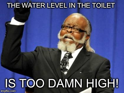 Too Damn High Meme | THE WATER LEVEL IN THE TOILET IS TOO DAMN HIGH! | image tagged in memes,too damn high | made w/ Imgflip meme maker