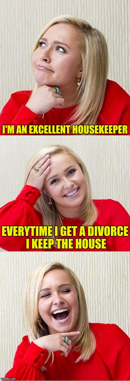 Bad Pun Hayden 2 | I'M AN EXCELLENT HOUSEKEEPER EVERYTIME I GET A DIVORCE I KEEP THE HOUSE | image tagged in bad pun hayden 2,meme,divorce,women,google images | made w/ Imgflip meme maker