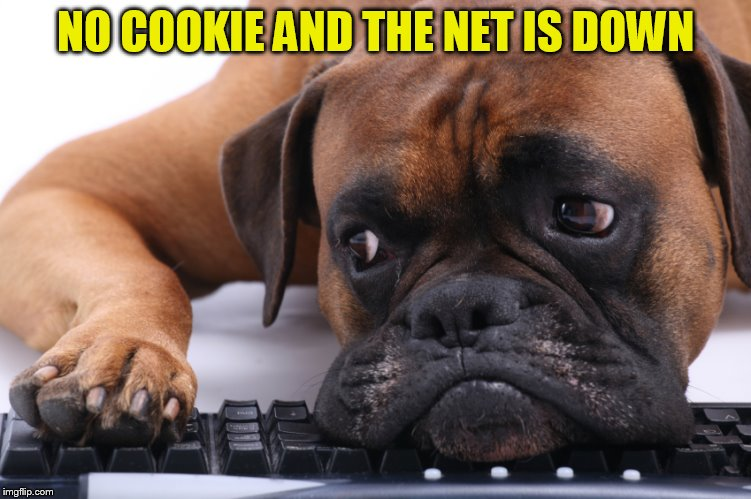 NO COOKIE AND THE NET IS DOWN | made w/ Imgflip meme maker