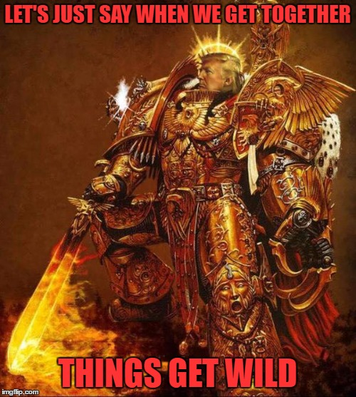 Trump Flame Warrior | LET'S JUST SAY WHEN WE GET TOGETHER THINGS GET WILD | image tagged in trump flame warrior | made w/ Imgflip meme maker