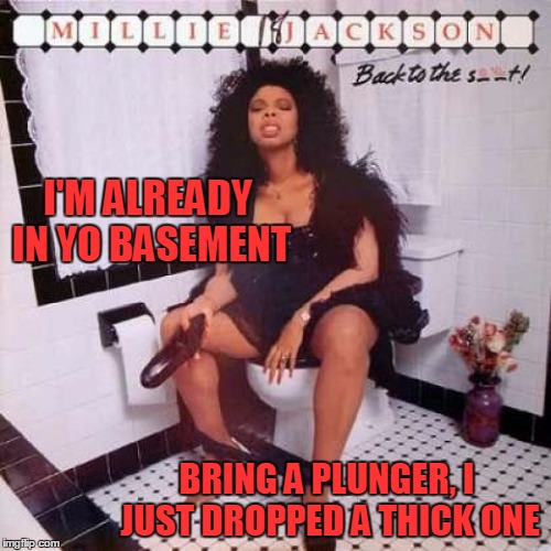 I'M ALREADY IN YO BASEMENT BRING A PLUNGER, I JUST DROPPED A THICK ONE | made w/ Imgflip meme maker