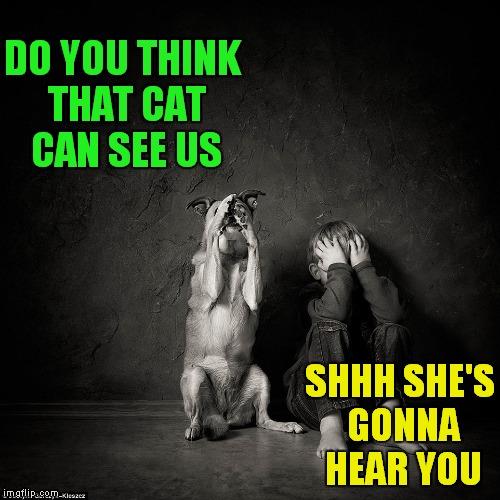 DO YOU THINK THAT CAT CAN SEE US SHHH SHE'S GONNA HEAR YOU | made w/ Imgflip meme maker