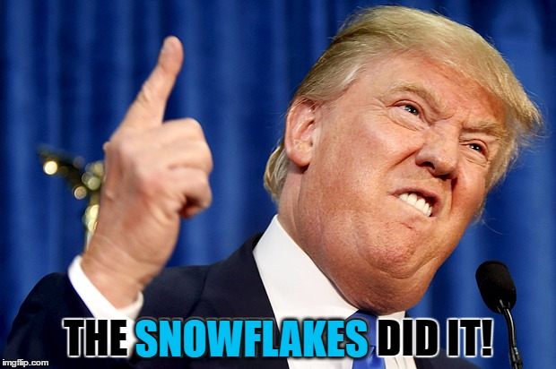 THE SNOWFLAKES DID IT! SNOWFLAKES | made w/ Imgflip meme maker