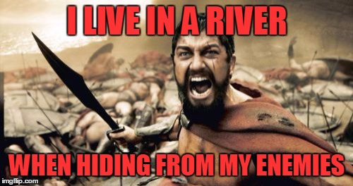 Sparta Leonidas Meme | I LIVE IN A RIVER WHEN HIDING FROM MY ENEMIES | image tagged in memes,sparta leonidas | made w/ Imgflip meme maker