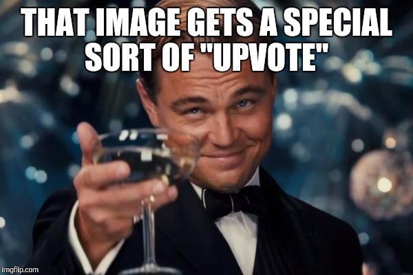 "Leonardo Dicaprio Cheers Meme | THAT IMAGE GETS A SPECIAL SORT OF ""UPVOTE"" 