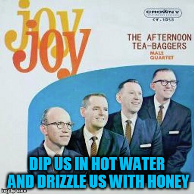 DIP US IN HOT WATER AND DRIZZLE US WITH HONEY | made w/ Imgflip meme maker