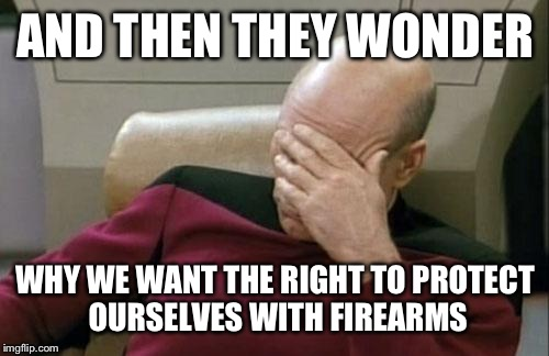 Captain Picard Facepalm Meme | AND THEN THEY WONDER WHY WE WANT THE RIGHT TO PROTECT OURSELVES WITH FIREARMS | image tagged in memes,captain picard facepalm | made w/ Imgflip meme maker