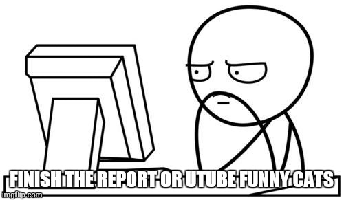 It's  complicated.  .. | FINISH THE REPORT OR UTUBE FUNNY CATS | image tagged in waiting gg,memes,report,cat,kitty,work | made w/ Imgflip meme maker