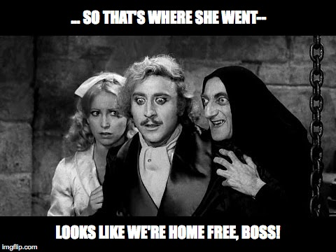 ... SO THAT'S WHERE SHE WENT-- LOOKS LIKE WE'RE HOME FREE, BOSS! | made w/ Imgflip meme maker